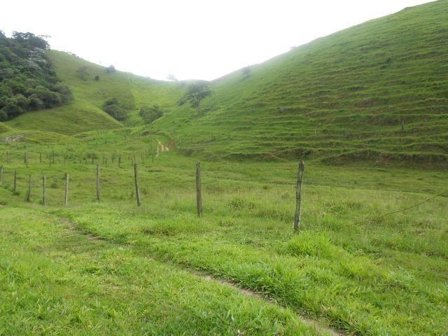 Jordão corretores - Fazenda 22 alqueires Cachoeiras de Macacu porteira fechada - Foto 9