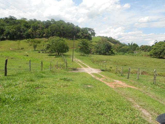 Jordão corretores - Fazenda 22 alqueires Cachoeiras de Macacu porteira fechada - Foto 4