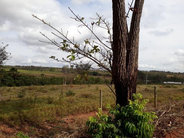 Vendo sitio 2 hectares (20.000 m2) - Foto 16