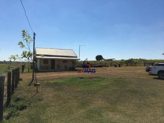 Fazenda na beira da BR 364 próximo à Cacoal - Foto 9
