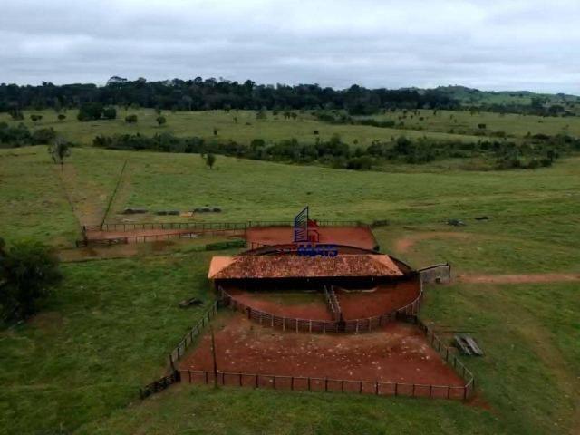 Belissima Fazenda Rural Espigão do oeste/RO - Foto 2