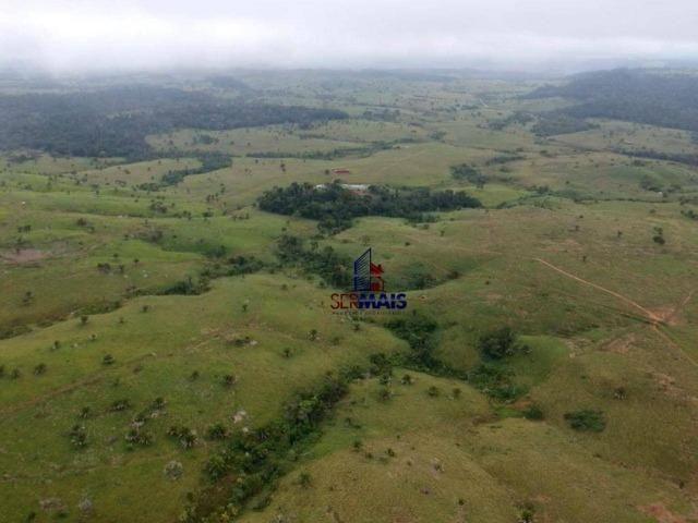 Belissima Fazenda Rural Espigão do oeste/RO - Foto 11