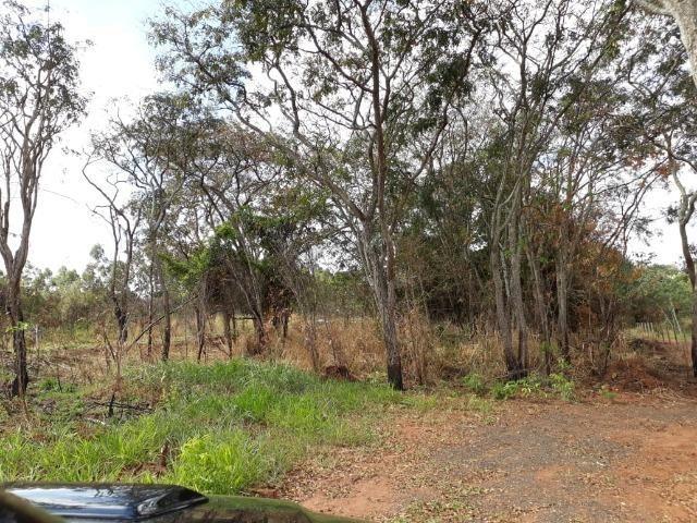 Vendo sitio 2 hectares (20.000 m2) - Foto 3