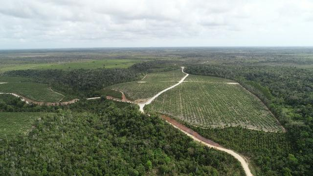 Terra à venda pra Reserva Legal - Foto 10