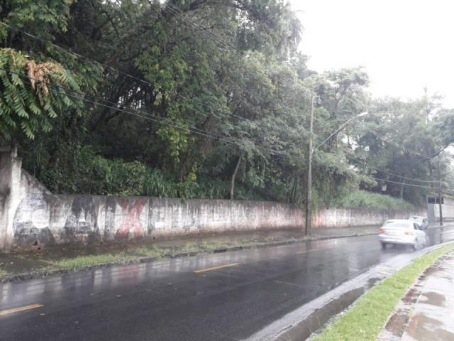 Terreno à venda em Jardim atlântico, Belo horizonte cod:44581 - Foto 3