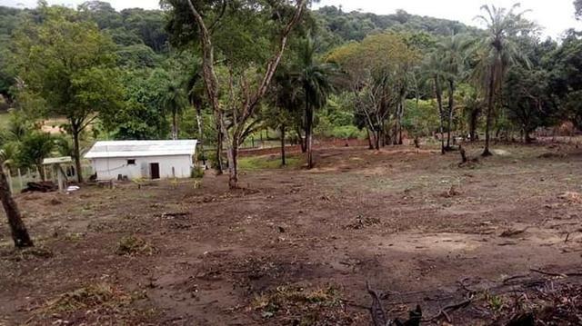 Sítio em paulista 50de frente com 70de fundos largura e 100metros de comprimento - Foto 17