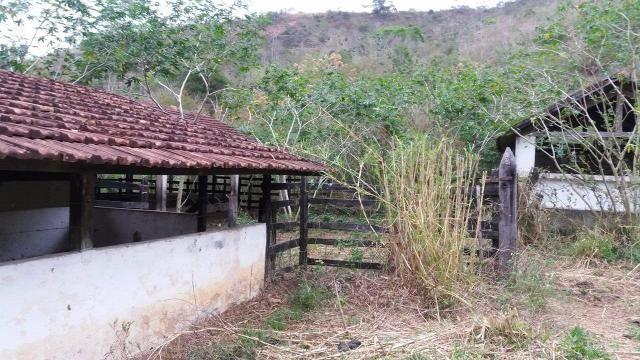Fazenda 17 alqueires, com sede de 4 quartos, piscina. oportunidade única - Foto 2
