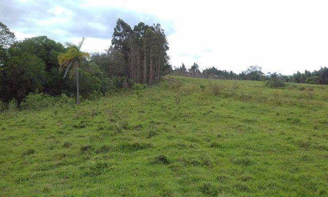 Sorocaba Região 30 Alqueires - Foto 12