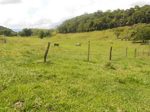 Jordão corretores - Fazenda 22 alqueires Cachoeiras de Macacu porteira fechada - Foto 5