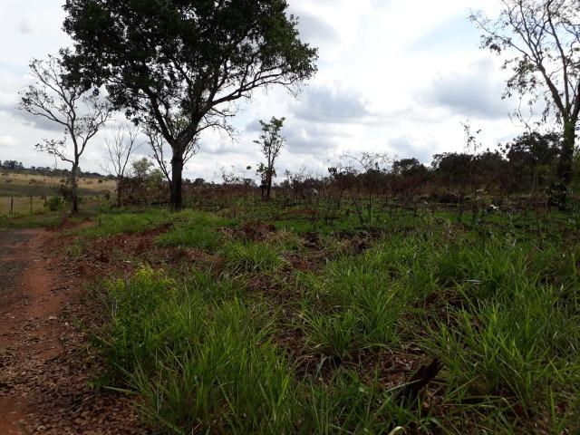 Vendo sitio 2 hectares (20.000 m2) - Foto 10