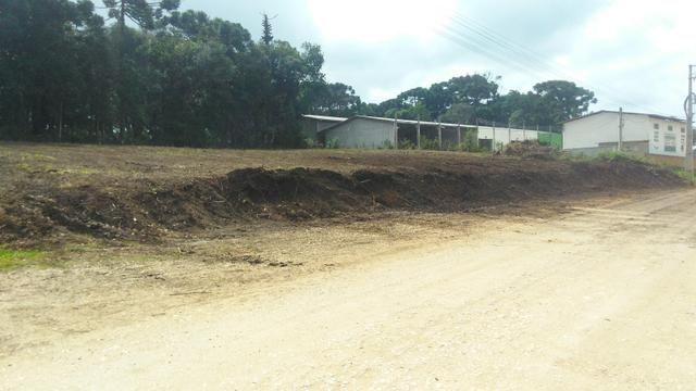 Terreno para aluguel em colombo - Foto 2