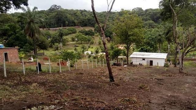 Sítio em paulista 50de frente com 70de fundos largura e 100metros de comprimento - Foto 18