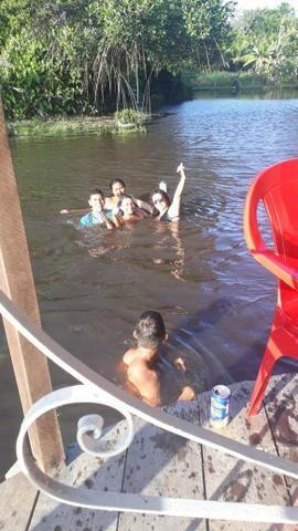 Alugo sítio/chácara para passar um dia diferente com seus amigos e familiares - Foto 7