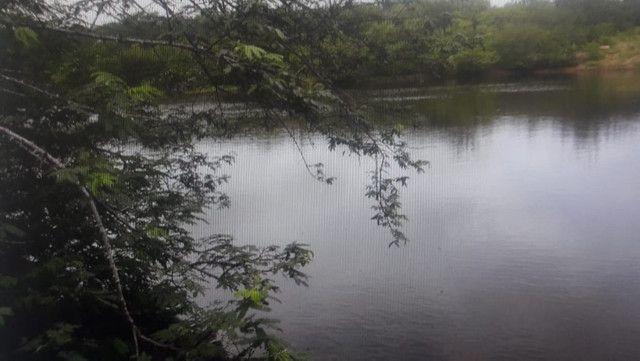 São Paulo do Potengi com 280 há, açude,cas,barreiro,lagoa,poço - Foto 13