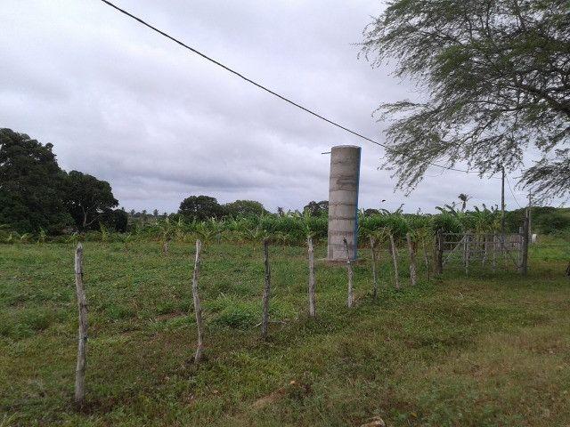 Fazenda em monte alegre, 30 há. duas casas, poço, curral, rio, galpão - Foto 7