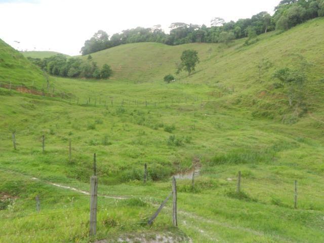 Jordão corretores - Fazenda 22 alqueires Cachoeiras de Macacu porteira fechada - Foto 10