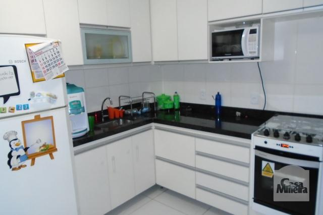 Apartamento à venda com 3 dormitórios em Jardim américa, Belo horizonte cod:225045 - Foto 14