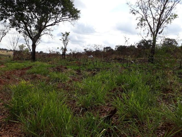 Vendo sitio 2 hectares (20.000 m2) - Foto 17