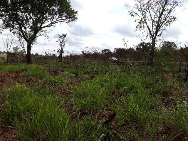 Vendo sitio 2 hectares (20.000 m2) - Foto 18