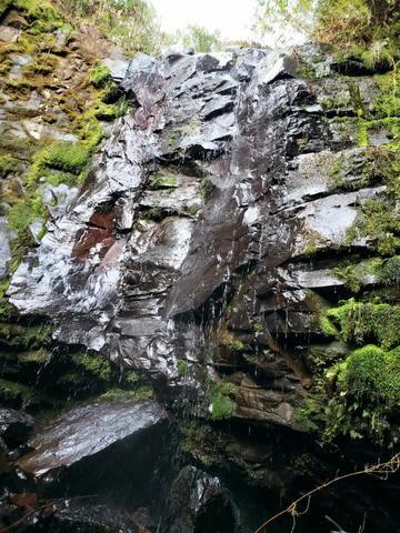 Sítio 14 hectares em Urupema com Cachoeira - Foto 17