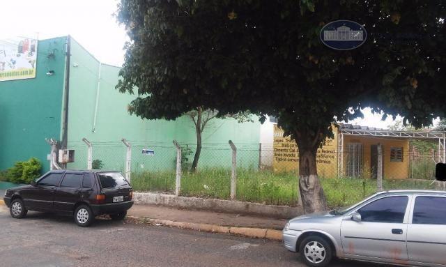 Terreno comercial para venda e locação, Jardim São Conrado, Birigüi. - Foto 2