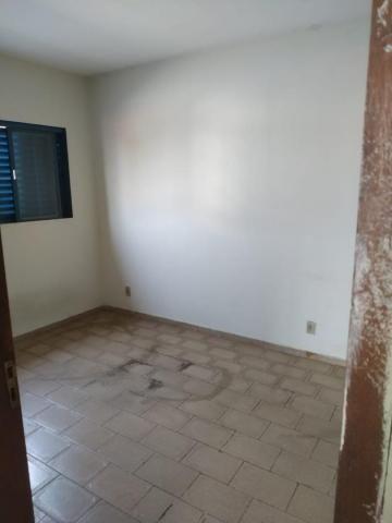 Casa com 1 dormitório para alugar, 50 m² por R$ 500,00/mês - Vila Moreira - São José do Ri - Foto 5