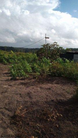 Vendo terreno e manassu Jaboatão dos Guararapes - Foto 2