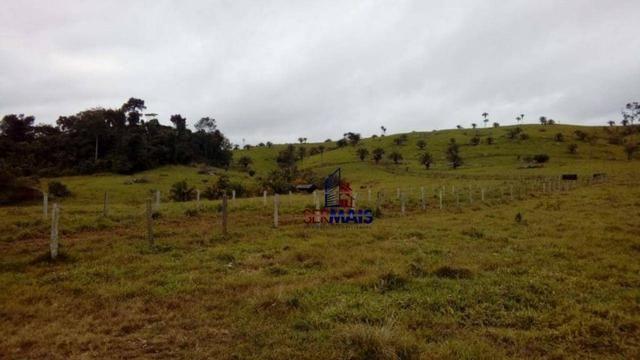 Belissima Fazenda Rural Espigão do oeste/RO - Foto 10