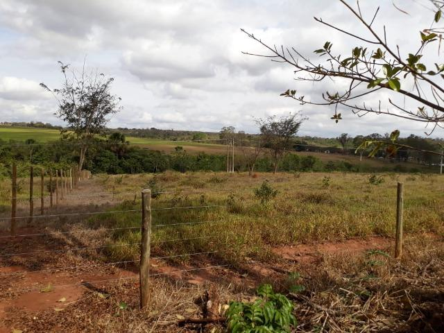 Vendo sitio 2 hectares (20.000 m2) - Foto 7