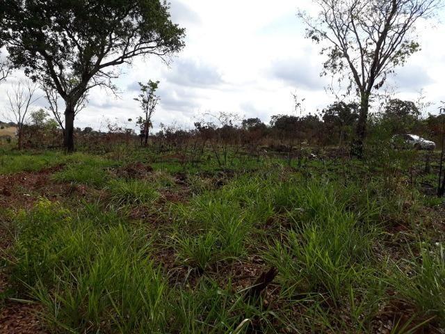 Vendo sitio 2 hectares (20.000 m2) - Foto 19