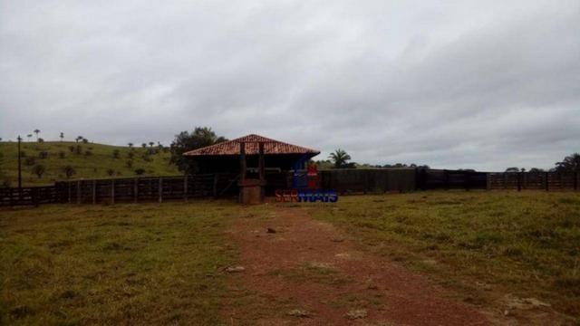 Belissima Fazenda Rural Espigão do oeste/RO - Foto 3