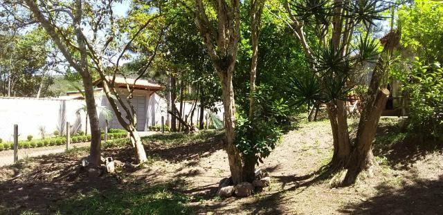 Sitio/ Chácara para Alugar/Palmeiras Suzano - Foto 5