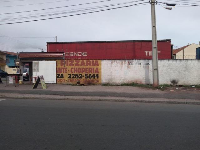 Terreno para investidores em São José dos Pinhais - Foto 8