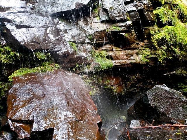 Sítio 14 hectares em Urupema com Cachoeira - Foto 14