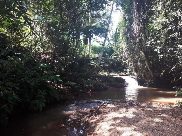 Vendo linda Chácara Verdadeiro Paraíso 19 mil metros - Foto 11