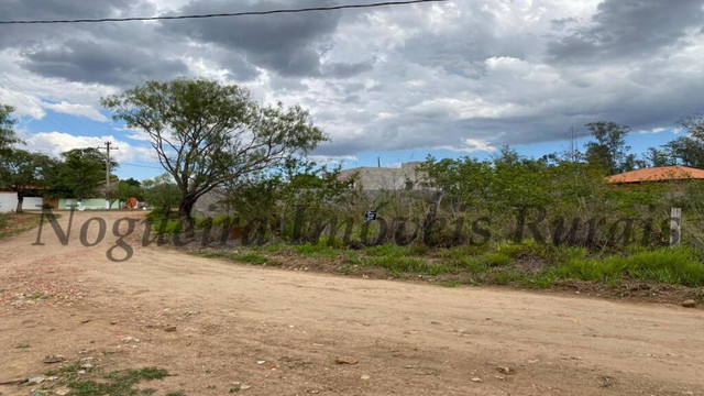 Terreno de 1.138 m², loteamento do Bosque (Nogueira Imóveis) - Foto 10