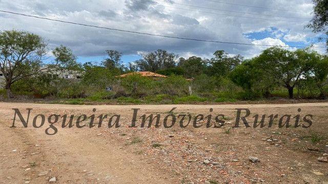 Terreno de 1.138 m², loteamento do Bosque (Nogueira Imóveis) - Foto 8