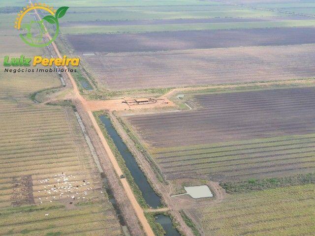 FAZENDA À VENDA EM MIRANDA - MS 5.200 HEC/2.000 HECTARES DE LAVOURA DE SOJA - Foto 6