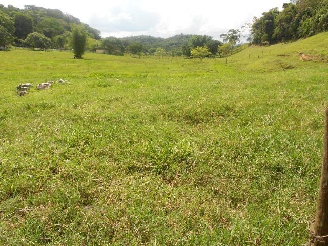 Jordão corretores - Fazenda 22 alqueires Cachoeiras de Macacu porteira fechada - Foto 3