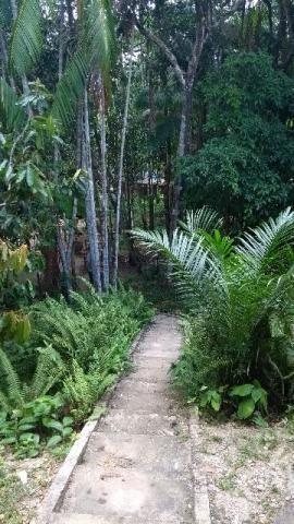 200 mil pra fechar o negocio Linda chácara no papuquara com uma casa com 3/4 ,sala,cozinha - Foto 9