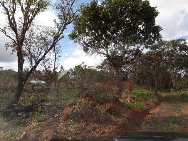 Vendo sitio 2 hectares (20.000 m2) - Foto 14