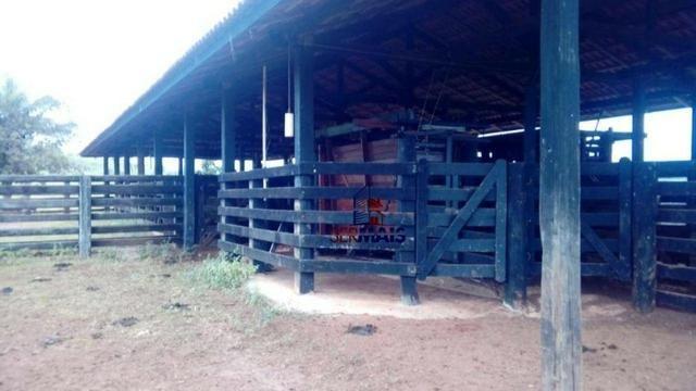 Belissima Fazenda Rural Espigão do oeste/RO - Foto 7