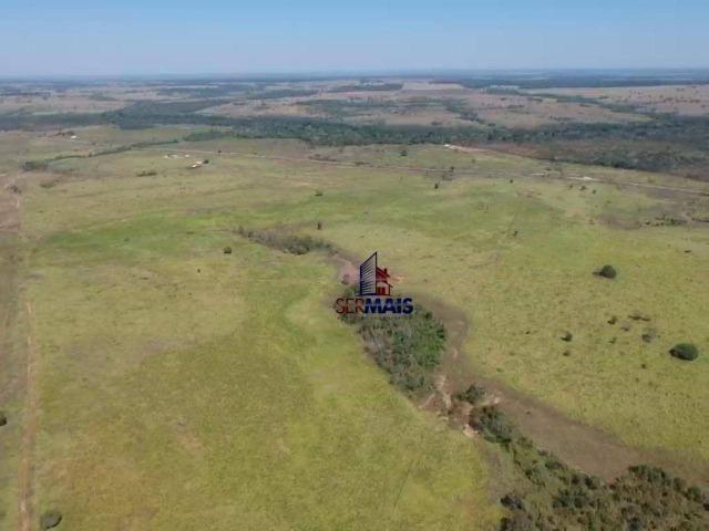 Fazenda na beira da BR 364 próximo à Cacoal - Foto 4