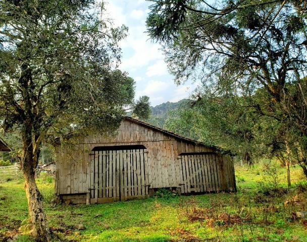 Sítio 14 hectares em Urupema com Cachoeira - Foto 7