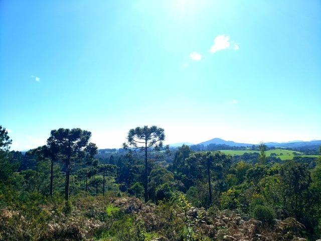 Belo Sítio com 30 hectares as Margens do Rio Canoas, em Rio Rufino - Foto 2