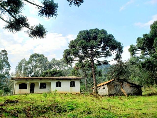 Sítio 14 hectares em Urupema com Cachoeira