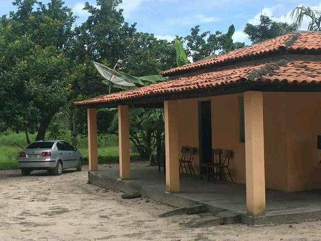 Fazenda em Governador Nunes Freire - Foto 2