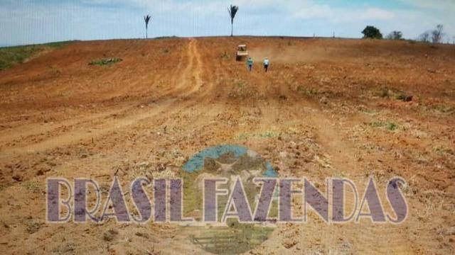 Fazenda em Itamaraju. Jucuruçu - Foto 7