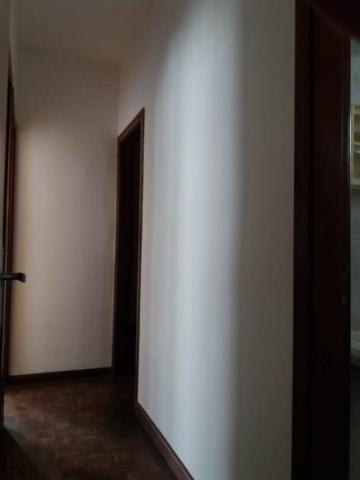 Apartamento à venda com 2 dormitórios em Santa amélia, Belo horizonte cod:44764