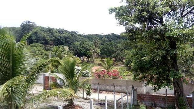 Sítio em paulista 50de frente com 70de fundos largura e 100metros de comprimento - Foto 9